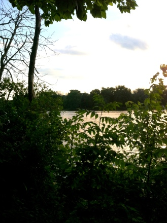 looking over fox river
