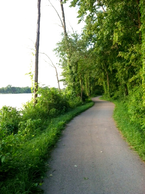 trail running along the river